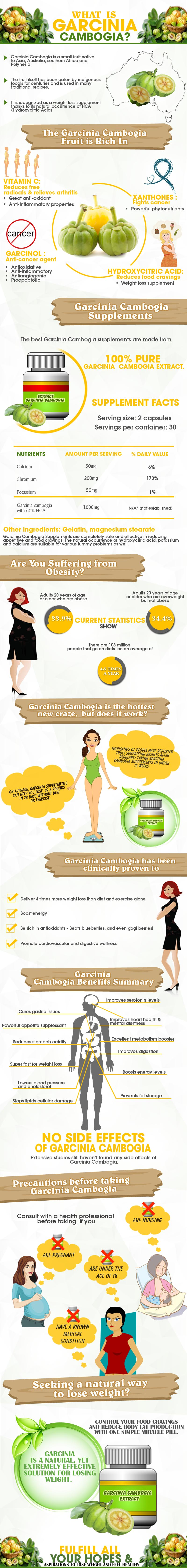 Garcinia Cambogia Health Benefits Infographic