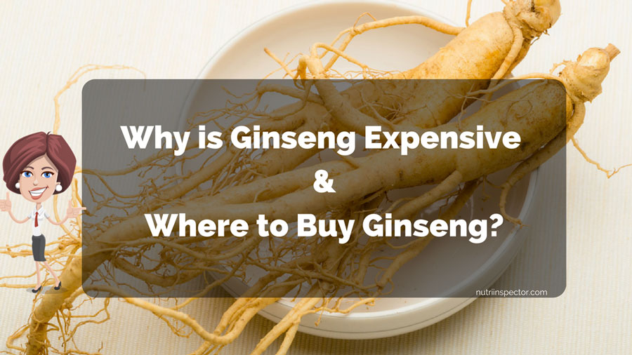 Why Is Ginseng Expensive And Where To Buy It